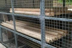 pioneering_cage